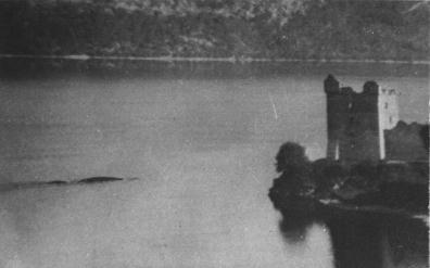 Nessie in Urquhart Bay